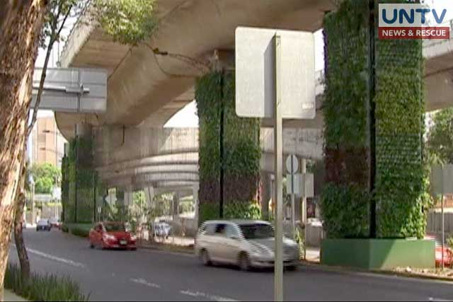 Mexicans Seek To Combat Pollution With Vertical Gardens Untv News